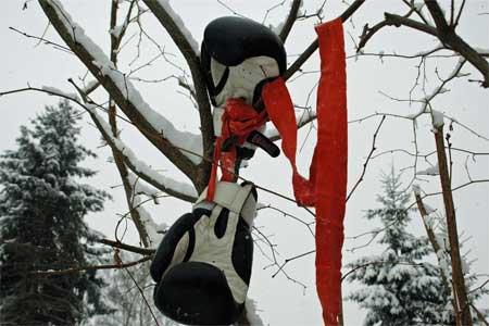 ShareDeutschland steckt im tiefsten Winter. Für die einen bedeutet die kalte Jahreszeit der Beginn der...